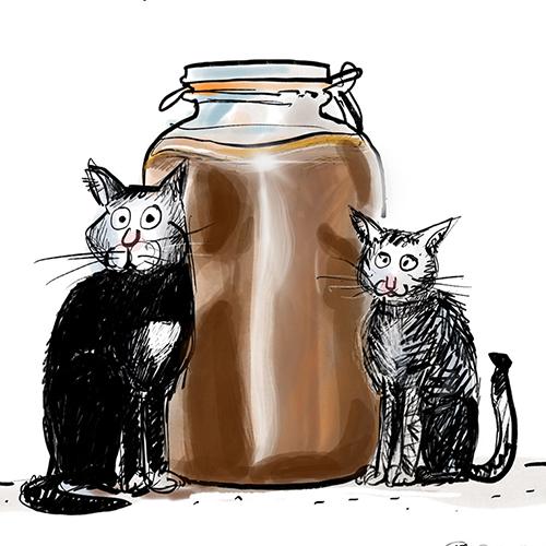 Kefirs & Kombucha illustrations pour un blog sur les boissons fermentées